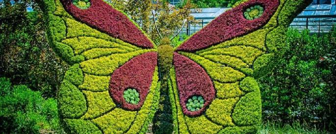 mosaiculture-atlanta-005