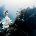 viz-alatti-fotok-002