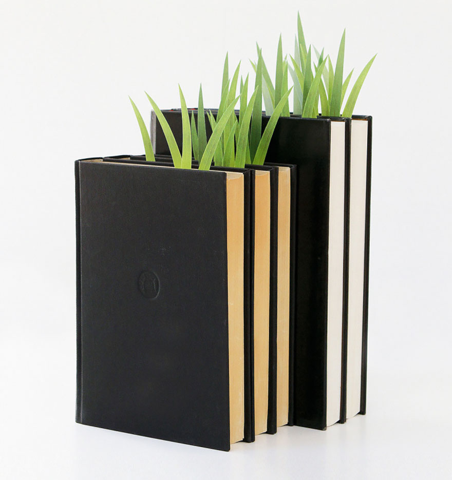 modern-termeszet-041