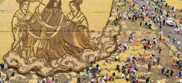rizsfold-alkotasok-006