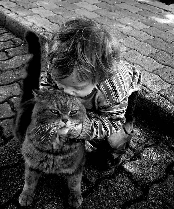 gyerekek-macskaikkal-012