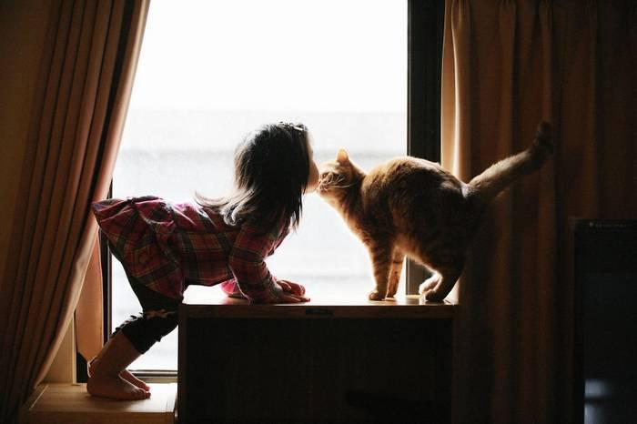 gyerekek-macskaikkal-014