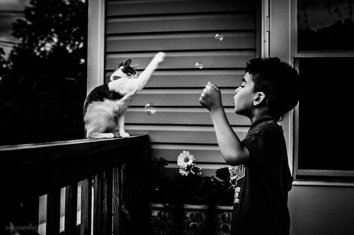 gyerekek-macskaikkal-016