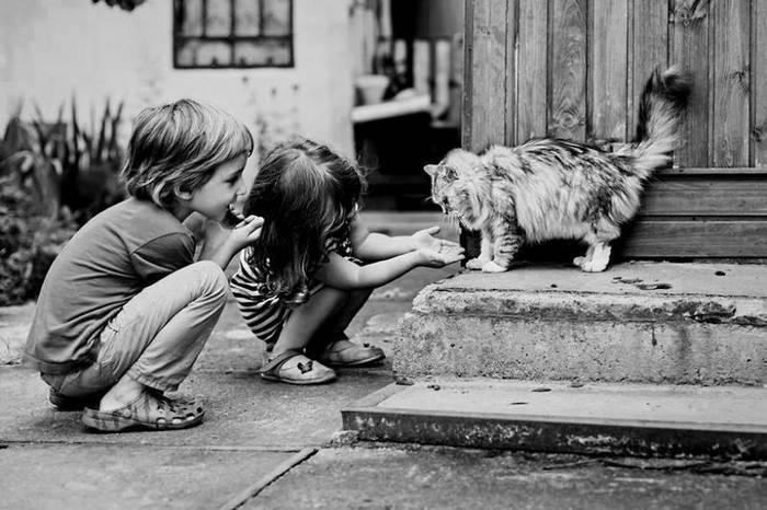 gyerekek-macskaikkal-017