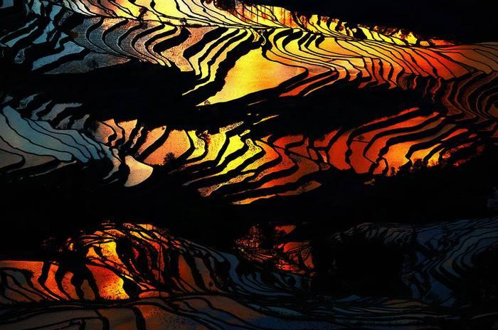 kaprazatos-rizsfoldek-014