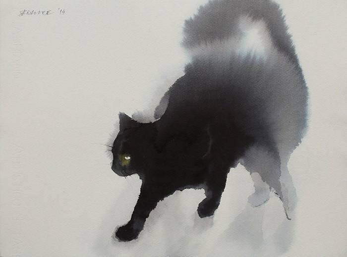 fekete-macskak-001