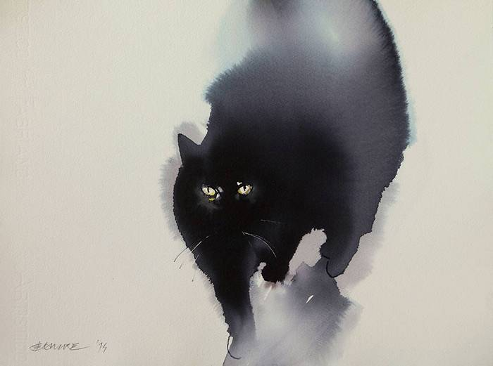 fekete-macskak-003