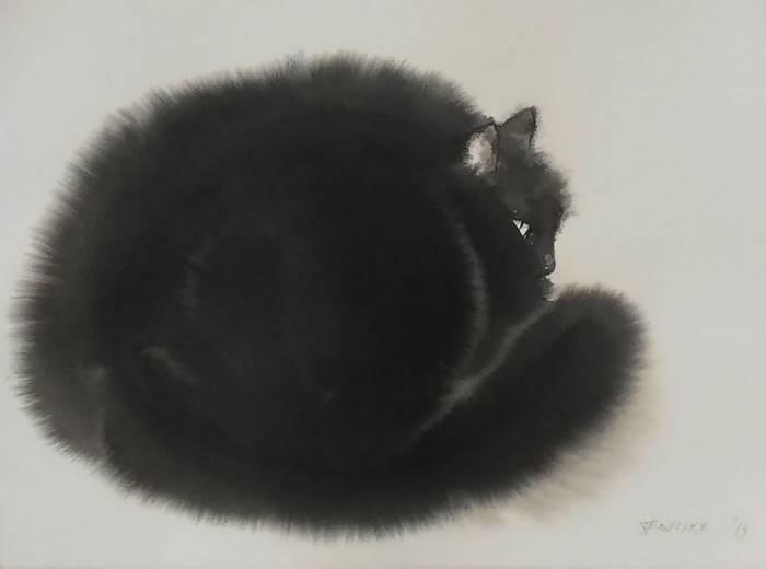 fekete-macskak-004
