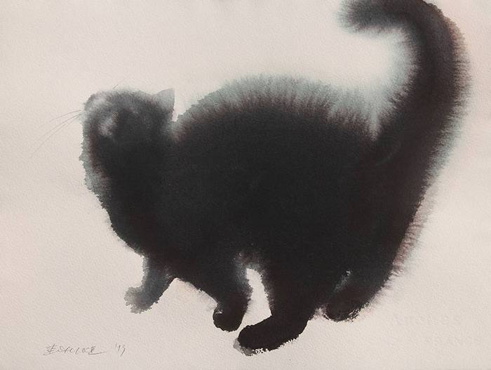 fekete-macskak-006