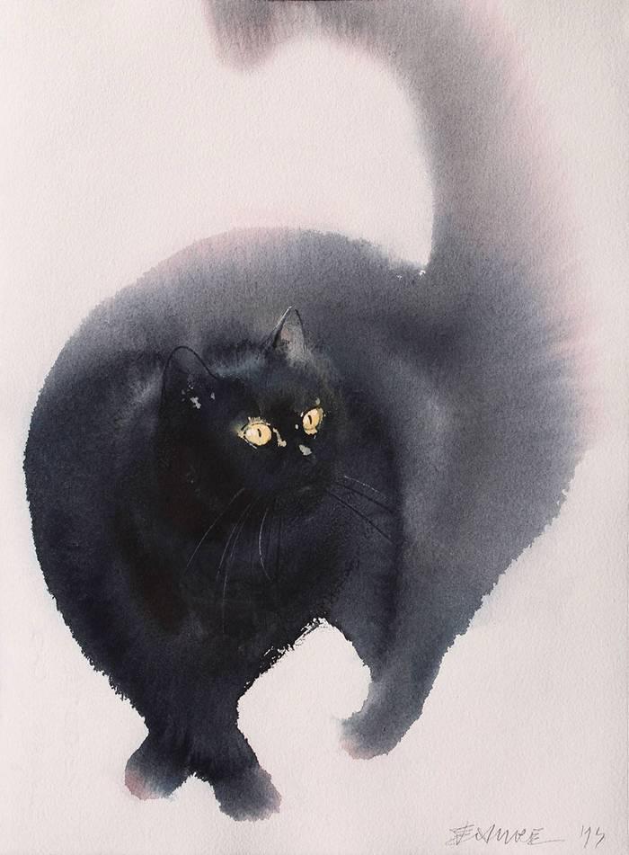 fekete-macskak-009