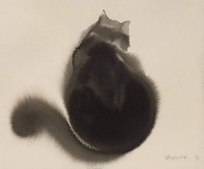 fekete-macskak-010