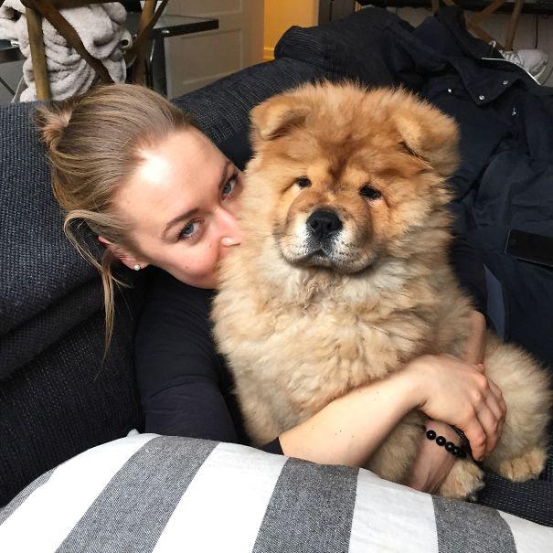 pufok-kutyusok-041