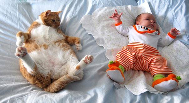 gyerekek-macskak-003