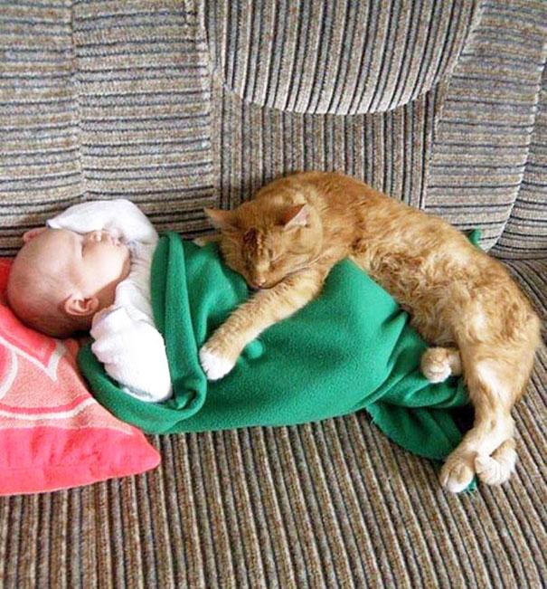gyerekek-macskak-007