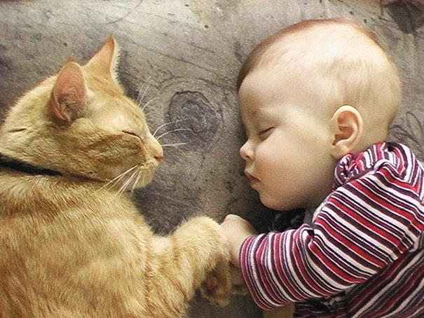 gyerekek-macskak-008